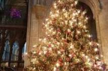 Large Christmas Tree in Ely Cathedral decorated with Christmas lights