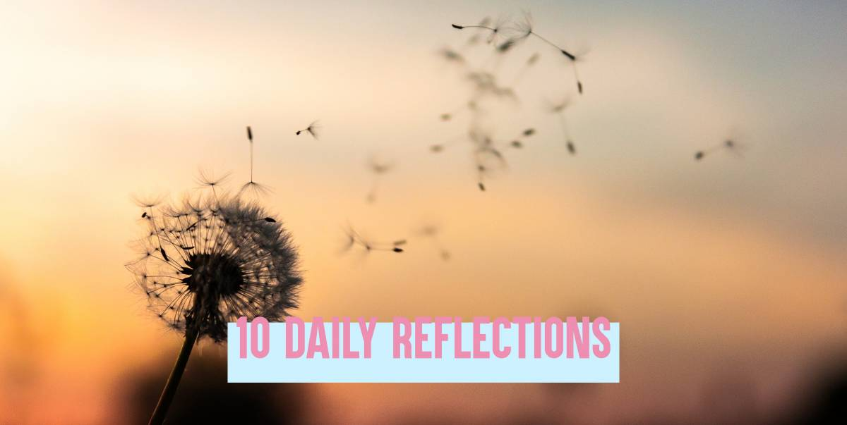 A dandelion blowing away in the wind with 10 daily reflections in text.