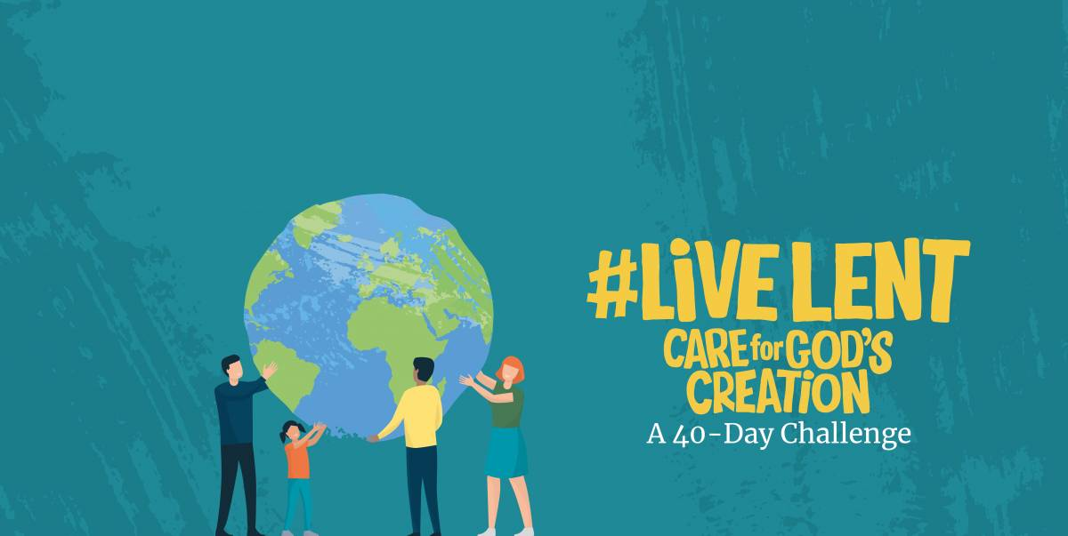 Hero image - #LiveLent 2020 Care for God's Creation