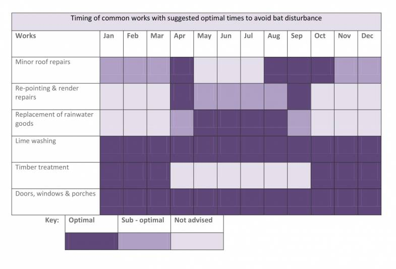Timing of common works with suggested optimal times to avoid bat disturbance