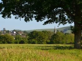 Countryside landscape with church spire in the distance