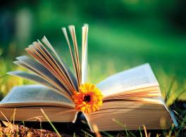 Open book outside with flower bookmark
