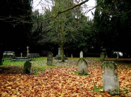 Gravemarkers in a cemetery with a tree in the middle and fallen leaves on the ground