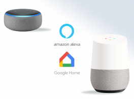 Amazon Alexa and Google Home smart speakers.