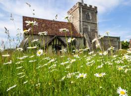 A church with wild flowers to the fore